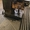 Продам молот ковочный пневматический  кузнечный МВ-412 - Изображение #3, Объявление #1704619