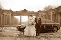 Фотографирование свадеб